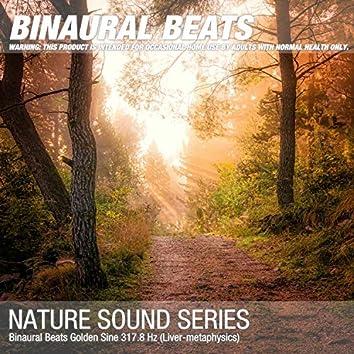 Binaural Beats Golden Sine 317.8 Hz (Liver-metaphysics)