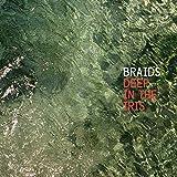 Songtexte von Braids - Deep in the Iris