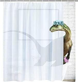 BLEUM CADE Modern timesm Funny Bathing Dinosaur Shower Curtain Bathroom Curtain with 12 Hooks, Durable Waterproof Animal Fun Bath Curtain