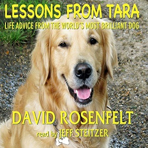 Lessons from Tara audiobook cover art