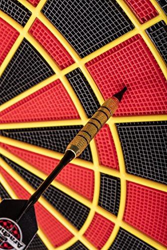 Arachnid Cricket Pro 800 - 7