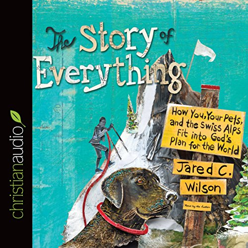 The Story of Everything audiobook cover art