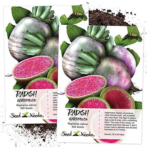 good01 500pcs Graines De Radis Pastèque Raphanus Sativus | Fruits Légumes à Planter Au Jardin Graines de radis pastèque