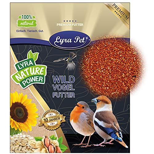 Lyra Pet® 25 kg Hirse rot lose Vogelfutter Bio Wildvogelfutter Wildvogel Vögel