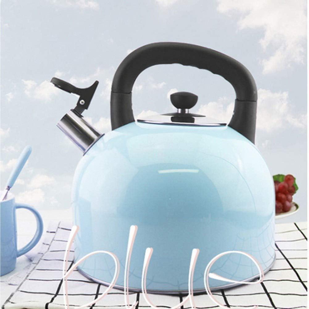 Waterkoker, fluitende theepot Roestvrij staal 4-5 liter theepot, ergonomische moderne kleur waterkoker, roze groen blauw (kleur: roze, maat: Blue