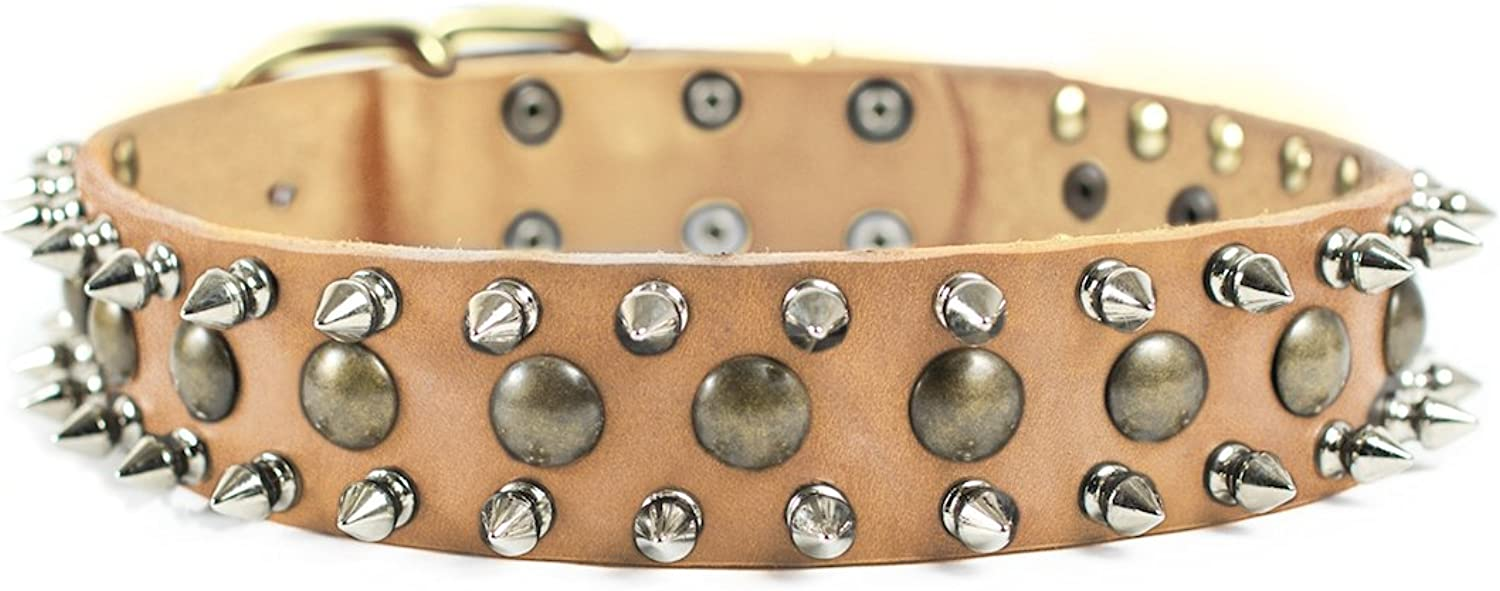Dean and Tyler  BUSINESS END  Dog Collar With Solid Brass Hardware  Tan  Size 56cm by 4cm Width  Fits Neck Size 51cmes to 61cmes.