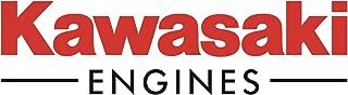 Kawasaki 2 Pack Genuine 92066-2244 Welch Plug OEM