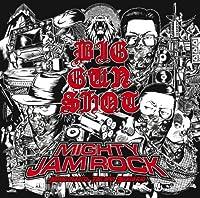 BIG GUN SHOT