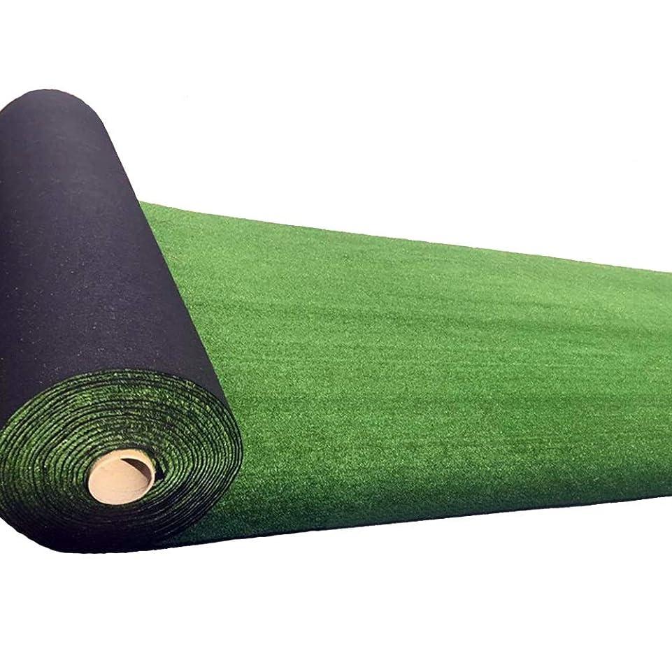ラフト標高ベンチ人工芝 10ミリメートル草グリーン人工芝、シミュレーションプラスチック偽ターフ1メートル幅屋内バルコニー、屋外屋根暗号化装飾芝生カーペット、3サイズ 庭の芝生 (Size : 1 m X 3 m)