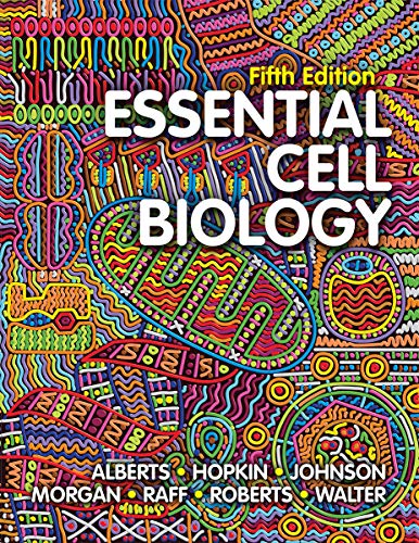 Compare Textbook Prices for Essential Cell Biology Fifth Edition ISBN 9780393680362 by Alberts, Bruce,Hopkin, Karen,Johnson, Alexander D.,Morgan, David,Raff, Martin,Roberts, Keith,Walter, Peter
