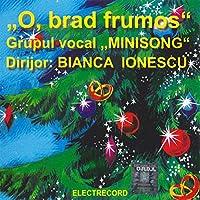 O Brad Frumos: Grupul Vocal Minisong