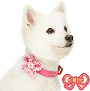 Blueberry Pet Detachable Adjustable Collars
