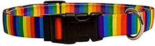 Yellow Dog Design Rainbow Stripes Pet Collar – Size Cat – 3/8 Inch Wide