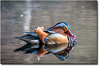 YQ Park Lake Mandarin Duck Artwork Picture Painting Print on Canvas 16x24 inch No Framed