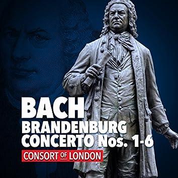 Bach: Brandenburg Concerto Nos. 1-6 - Consort of London
