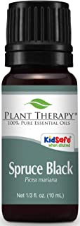 Plant Therapy Spruce Black Essential Oil 10 mL (1/3 oz) 100% Pure, Undiluted, Therapeutic Grade