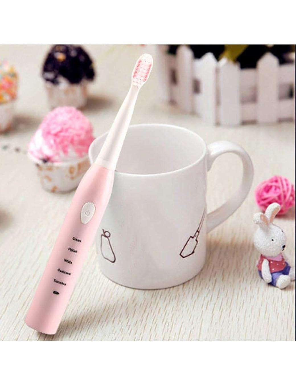 モディッシュ上げるウェイター柔らかい大人歯ブラシ音波電動歯ブラシ女性男性オーラルケアホワイトニング4ピースヘッド歯ブラシ防水、ピンク