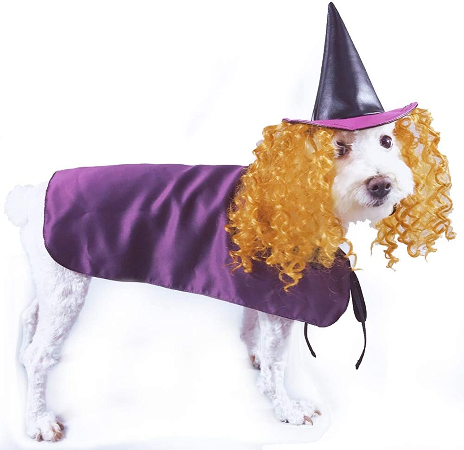 Coppthinktu Witch Dog Costume Pet Halloween Fancy Purple Cloak with Hat and Wig