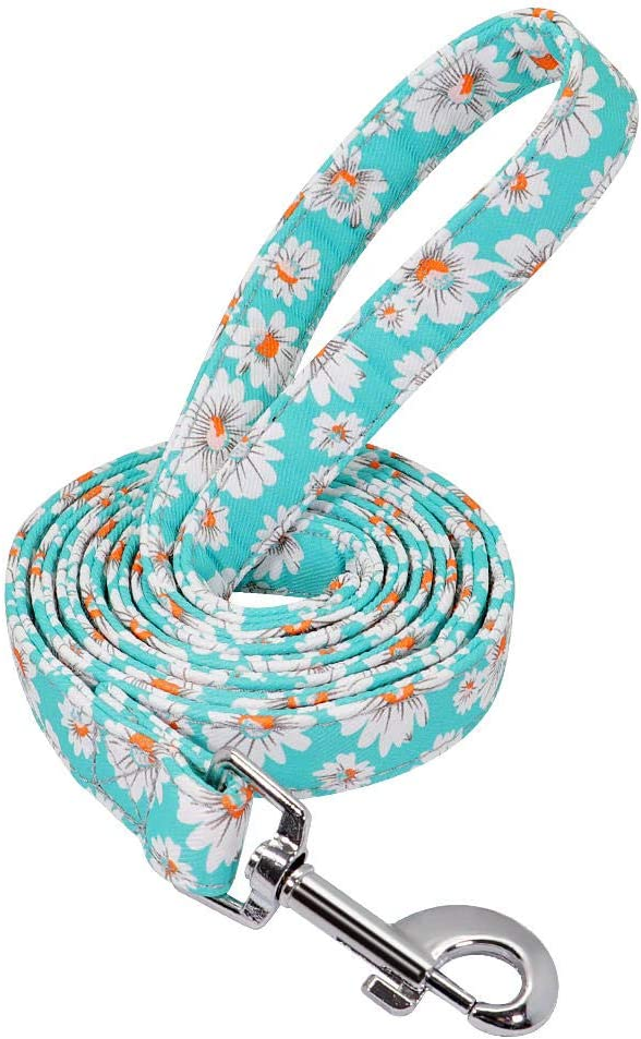 Yisatann Strong Rope Dog Leash Pet Walking Nashville-Davidson Mall Challenge the lowest price of Japan Nylon