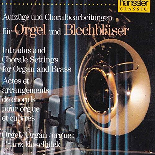Franz Haselböck and Bläserensemble der Militärmusik Burgenland