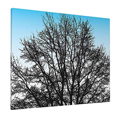 """Nature Leafless Autumn Winter Tree with Branches and Sunset Sky Landscape Image Blue White Seal Brownpainting 16"""" X 20"""" Panoramic Canvas Wall Art"""