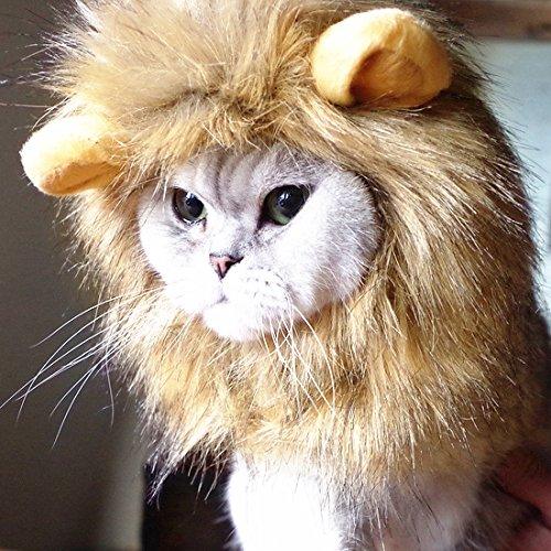 Idepet Dog Cat Lion Mane - Realistic Funny Lion Mane for Dogs - Complementary Lion Mane Hat for Dog Cat Costumes,Halloween Lion Mane Costume for Cat & Dog (Cat Lion Mane)