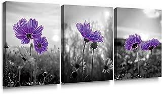 Best purple daisy decor Reviews