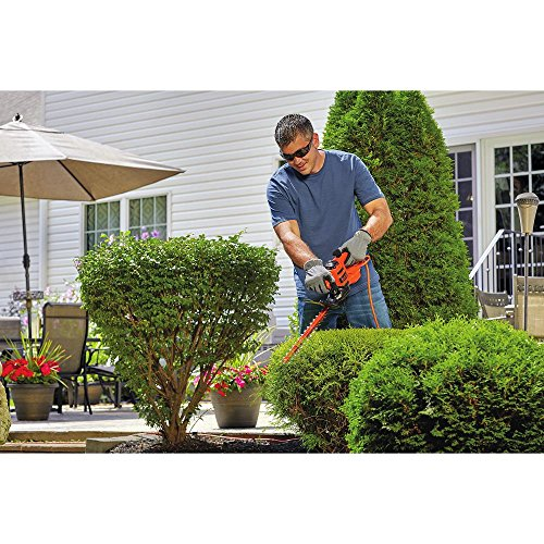 BLACK+DECKER BEHT150 Battery Powered Hedge Trimmer