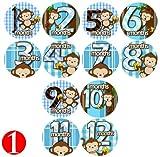 Baby Photo Onesie Milestone Stickers BOY Banana Monkeys Baby Month Onesie Stickers Baby Shower Gift Photo Shower Stickers Choose 1 of 9 Designs! by OnesieStickers