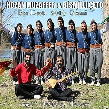 Bın Desti 2019 Grani (feat. Bismilli Çeto) [Ağır Delilo Halay]