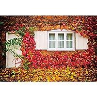 GooEoo 5x3ft 秋の赤いカエデの葉アンティークレンガの部屋の窓落ち葉風景写真背景誕生日パーティースタジオ小道具家族パーティー誕生日背景ベビーシャワービニール素材