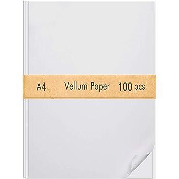 Darice Vellum Value Pack 8.5 x 11 inches 50//Pkg-Clear 95gsm