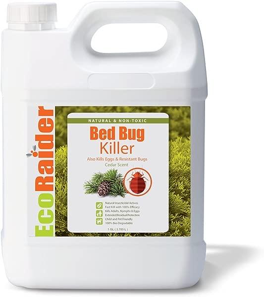 EcoRaider Bed Bug Killer Spray 1 Gallon Jug Green Non Toxic 100 Kill Extended Protection