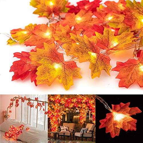 Thanksgiving Day Burning 14.7 feet 40 LED Autumn Garland Lights, Halloween Christmas Party Waterproof Decorative Lights for Indoor and Outdoor, Perfect Decoration for Autumn (Warm White)