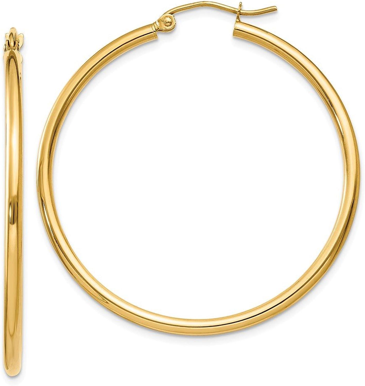 Beautiful Yellow gold 10K Yellowgold 10K Polished 2mm Tube Hoop Earrings