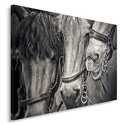 Feeby. Cuadro en lienzo - 1 Parte - 80x120 cm, Imagen impresión Pintura decoración Cuadros de una pieza, CABALLOS, NATURALEZA, BLANCO Y NEGRO