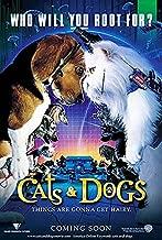Kediler ve Kopekler - Cats&Dogs