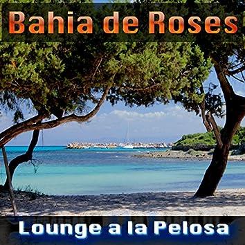 Lounge a la Pelosa