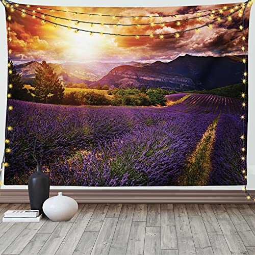 Ambesonne Clouds Tapestry, Lavender Field at Sunset with Contrasting Colors Rural Epic Harvest Scenery, Wide Wall Hanging for Bedroom Living Room Dorm, 80' X 60', Orange Violet Mauve