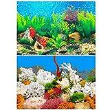 Amakunft Adhesivo para fondo de acuario de 30 cm de alto x 62 cm de ancho, doble cara para fondo de acuario (plantas de agua y roca de coral)