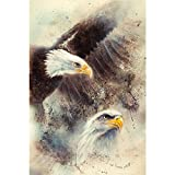 ArtzFolio Airbrush Artwork of Two Eagles D2 Unframed Paper Poster 12 X 18Inch