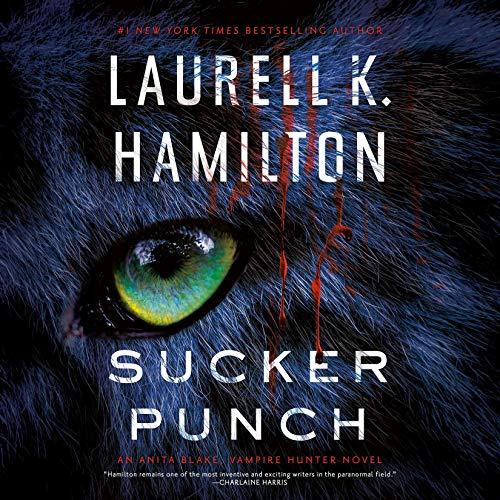 Sucker Punch audiobook cover art