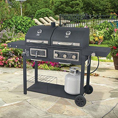 Backyard Grill Gas/Charcoal Grill