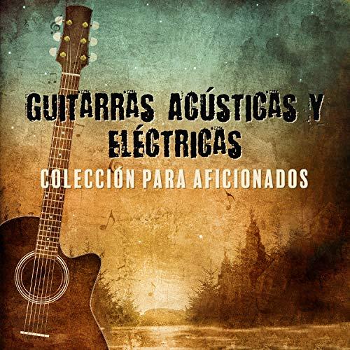 Guitarras Acústicas y Eléctricas: Coleccion para Aficionados