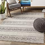 Artistic Weavers Yuna Area Rug, 5'3' x 7'3', Light Grey