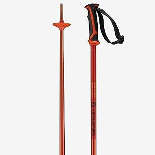 Best colorful ski poles Reviews