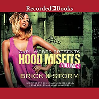 Hood Misfits, Volume 4 audiobook cover art