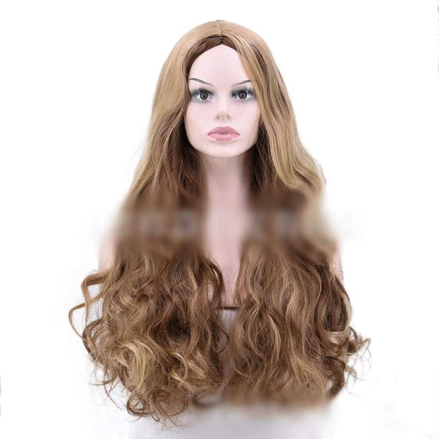 あまりにも陰気わなYrattary 茶色のハイライト黒髪の女性のナチュラルに見えるかつら耐熱ファイバー複合毛レースかつらロールプレイングかつら (色 : ブラウン)