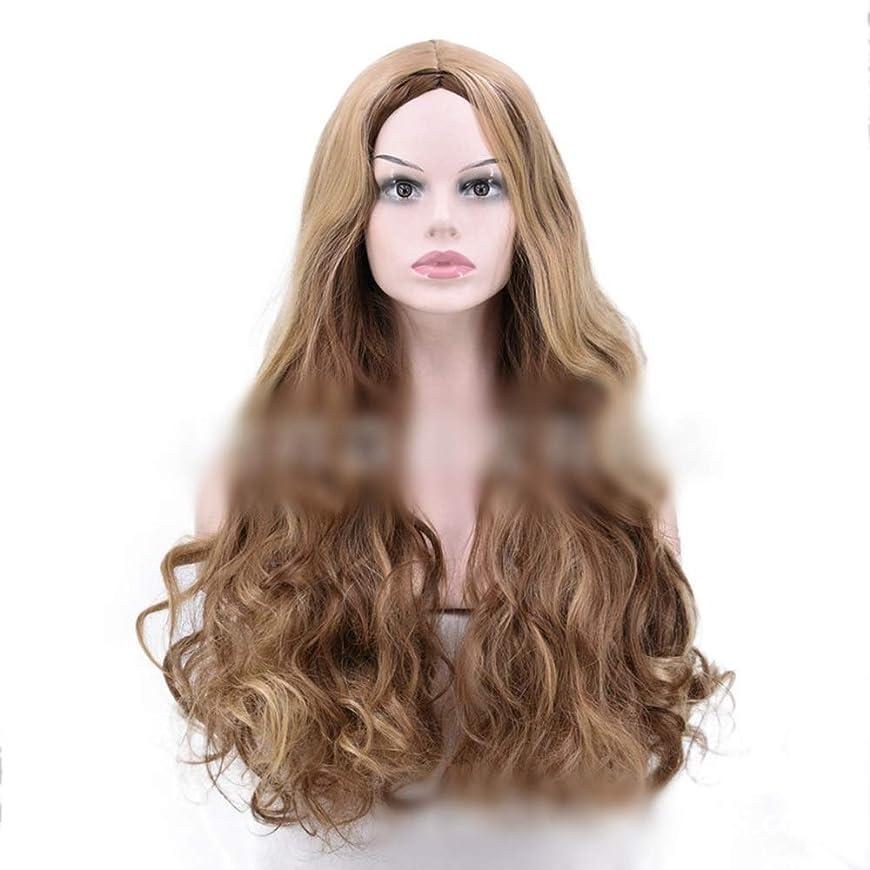 ちなみに旅行者繊維Yrattary 茶色のハイライト黒髪の女性のナチュラルに見えるかつら耐熱ファイバー複合毛レースかつらロールプレイングかつら (色 : ブラウン)