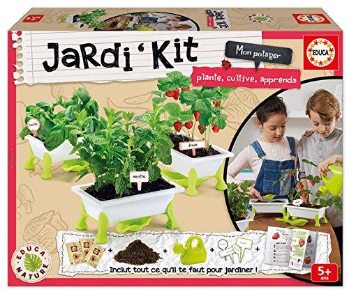 Kit pour faire pousser des fraises et de la menthe